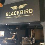 Lettrage découpée à la forme – BLACKBIRD CAFE à St Etienne (42)